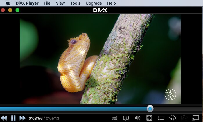 DivX - 4K player for Mac