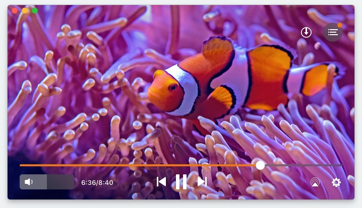 Best media player for mac