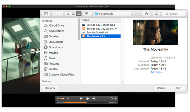 app to play mkv files on mac