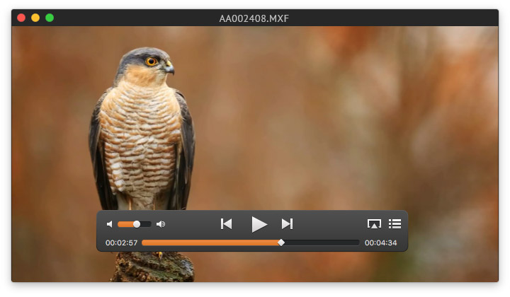 Free MXF Viewer Mac App