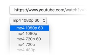 How to Download Youtube Videos on Macbook or Mac