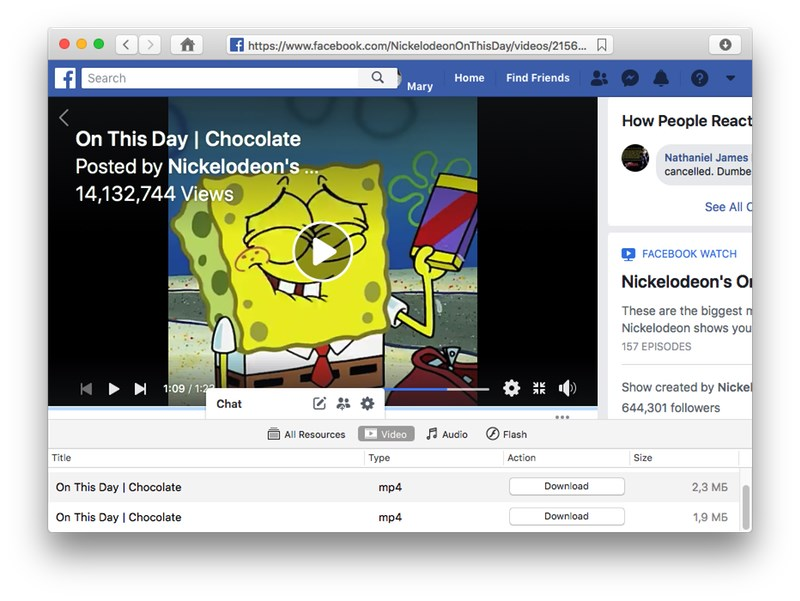 facebook video downloader mac
