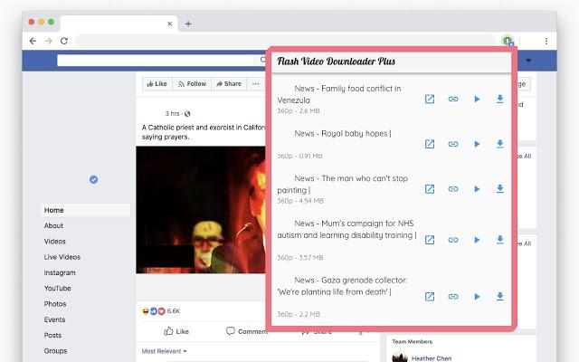 Safari video download plugin