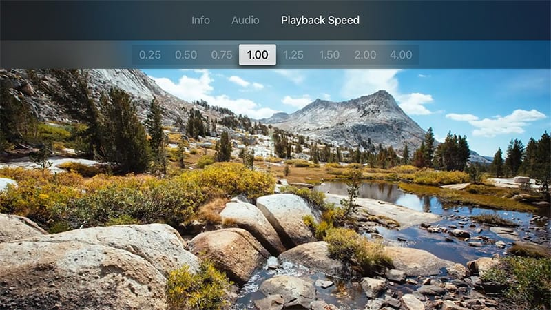 Video and audio player features